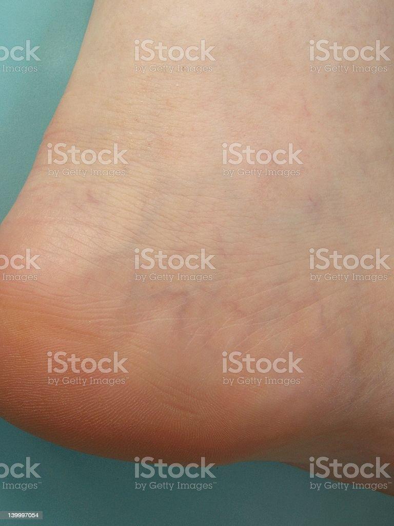 Veins on foot stock photo