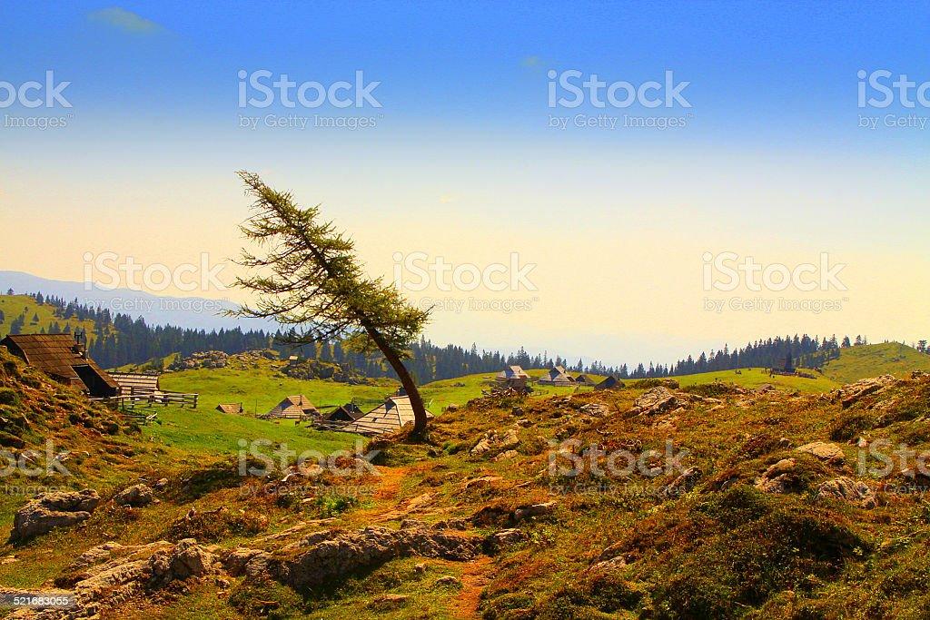 Velika Planina in autumn, Slovenia stock photo
