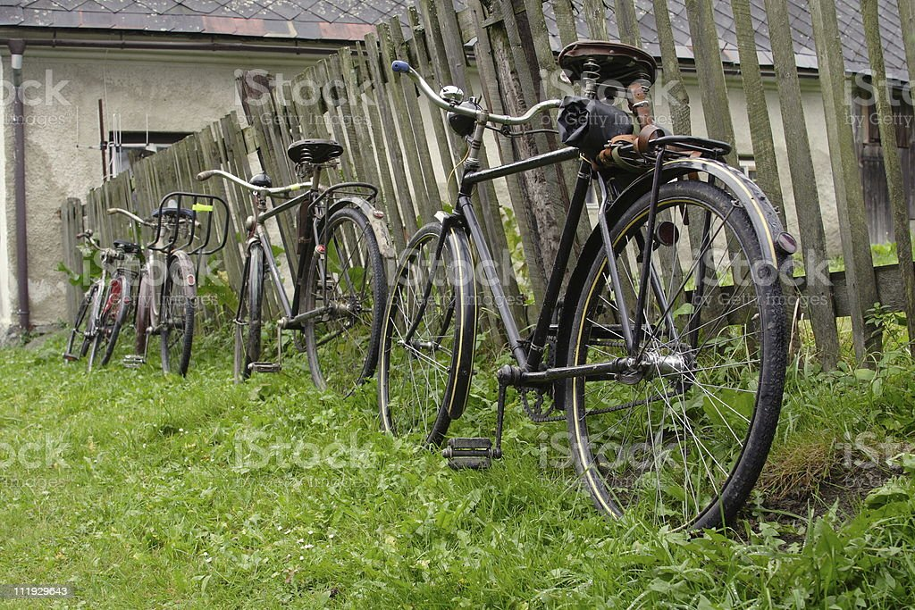 velocipedes royalty-free stock photo