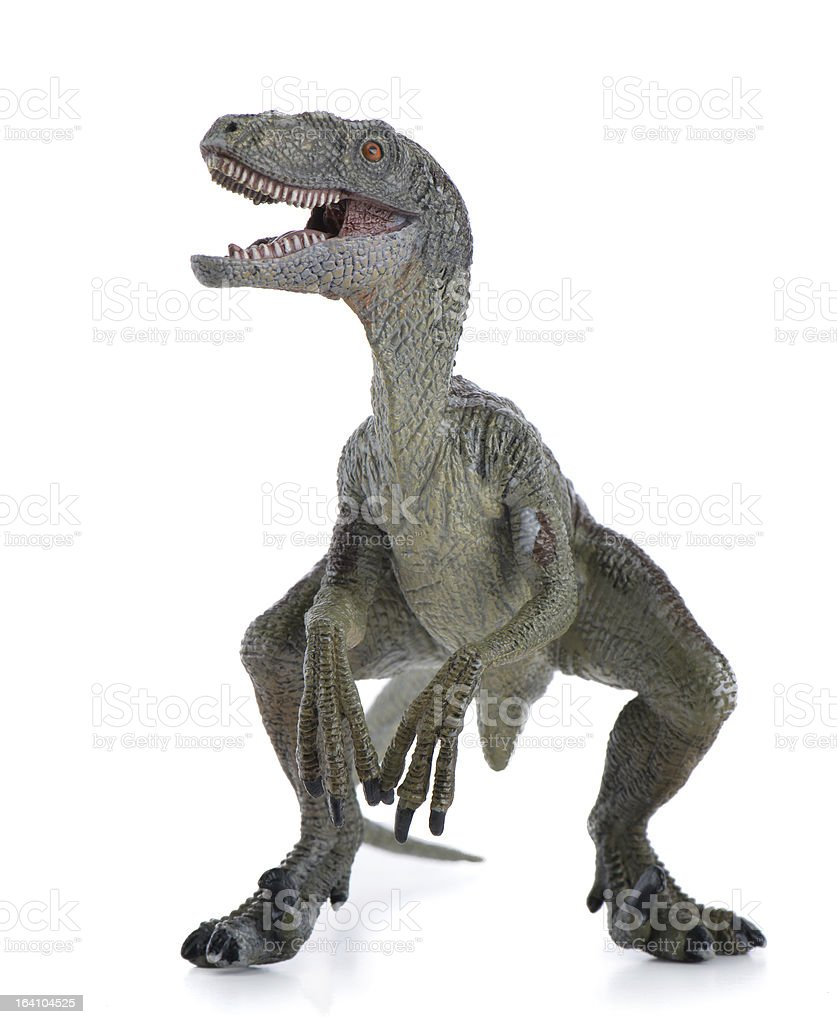 Velociraptor Dinosaur royalty-free stock photo