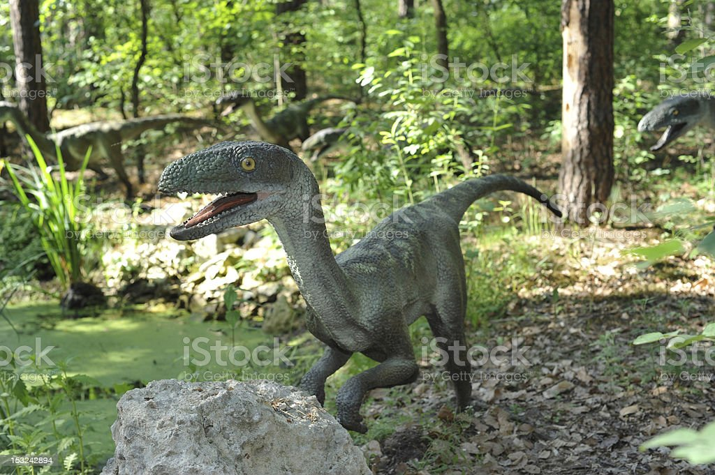 Velociraptors stock photo