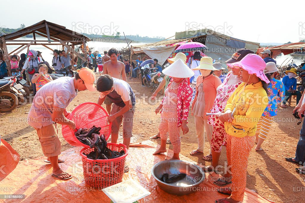 Vendors selling fresh water fishes stock photo