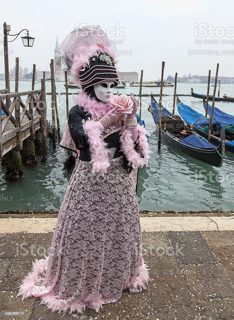 Venetian Costume with a Rose stock photo