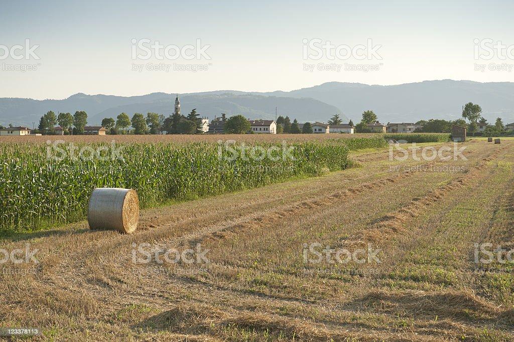 Venetian countryside stock photo