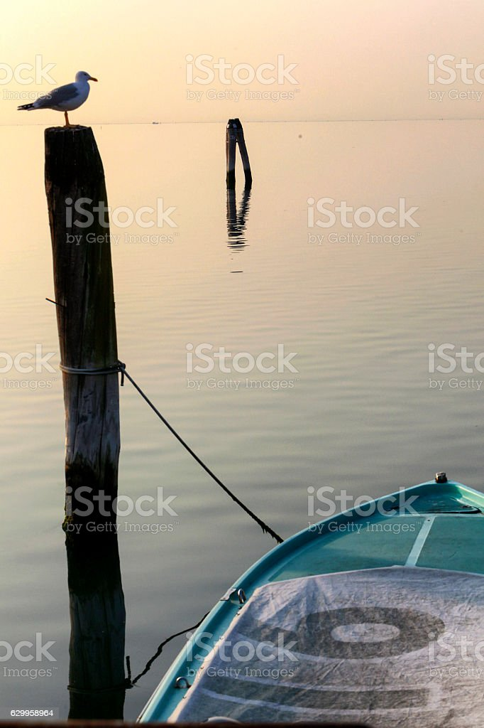 venetian lagoon stock photo