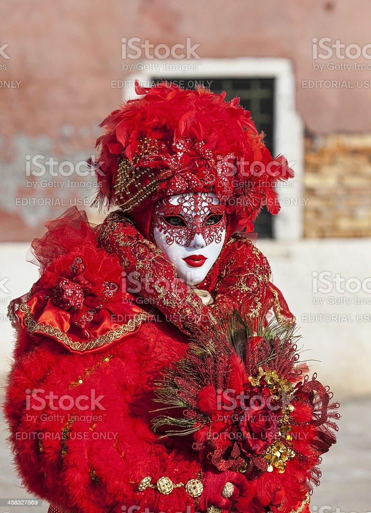 Venetian Mask royalty-free stock photo