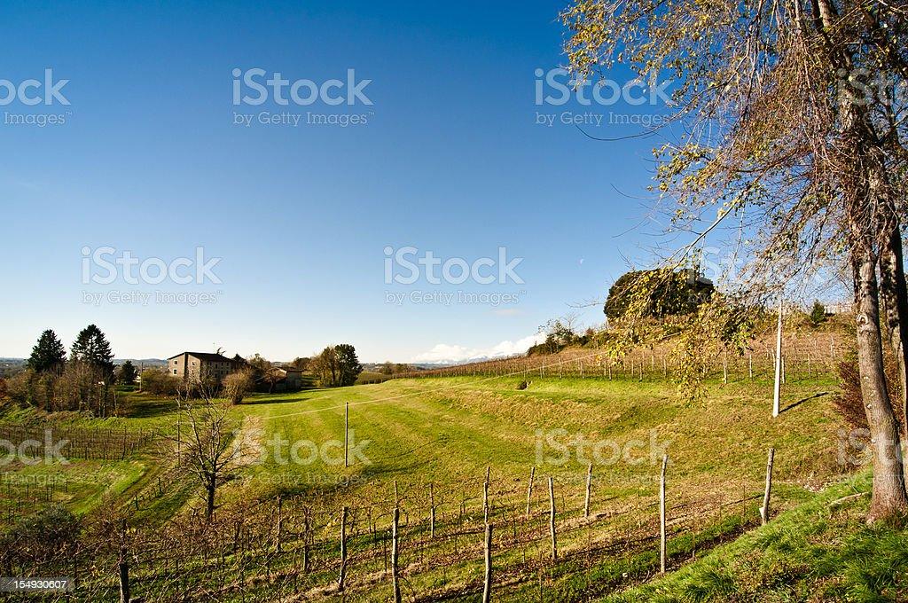 Veneto, Italy vineyard landscape stock photo