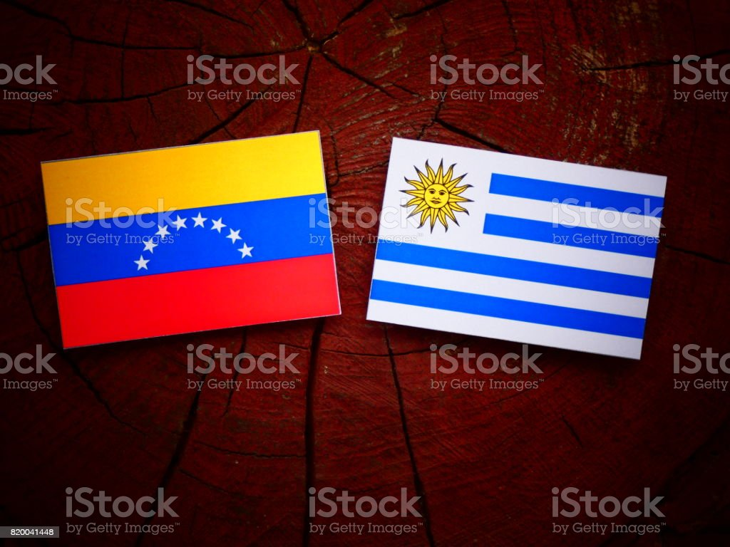 Venezuelan flag with Uruguaian flag on a tree stump isolated stock photo