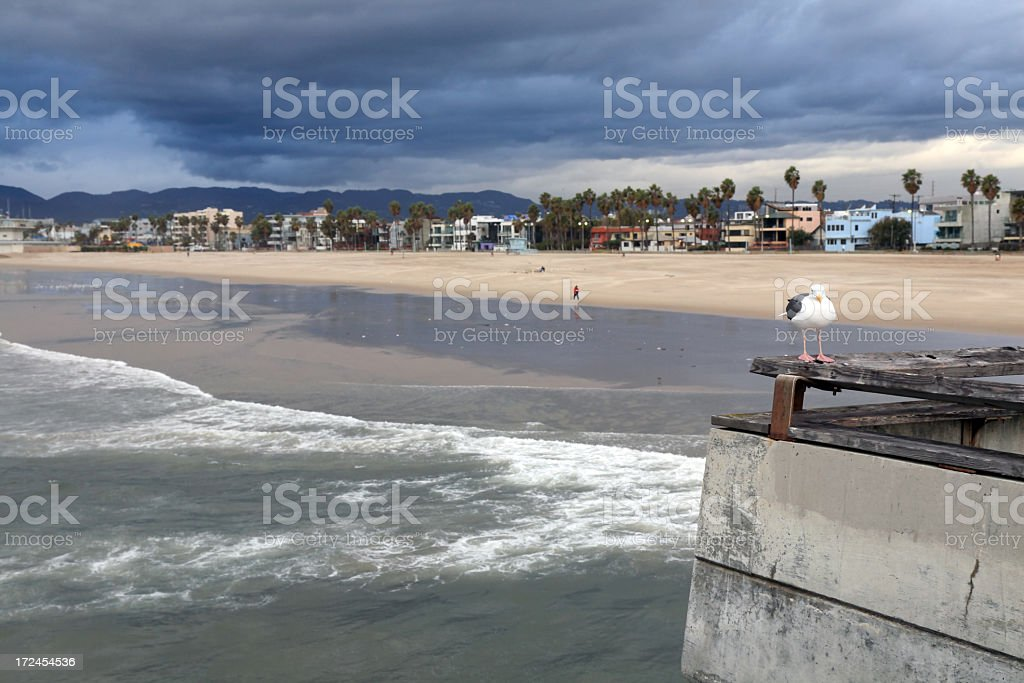 Venice Beach royalty-free stock photo
