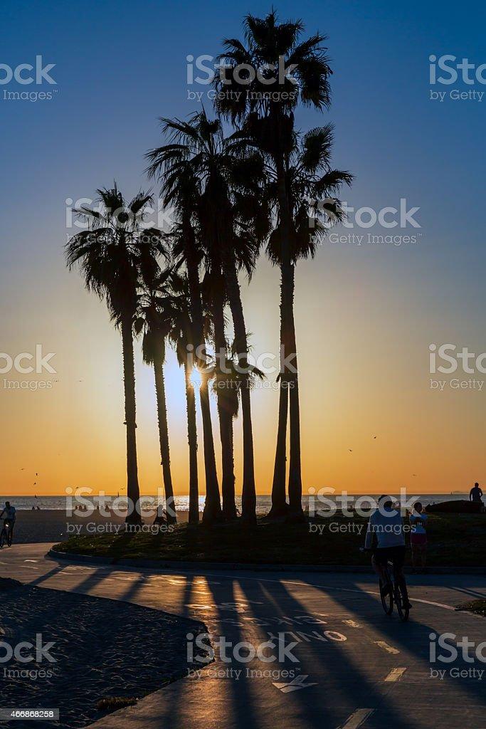 Venice Beach Sunset and Palm Trees, Los Angeles, California stock photo