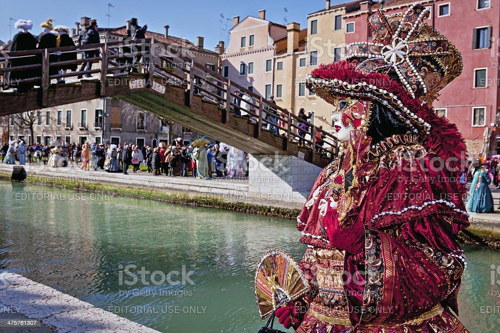 Venice Carnival II royalty-free stock photo
