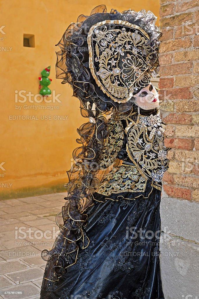 Venice Carnival VII royalty-free stock photo