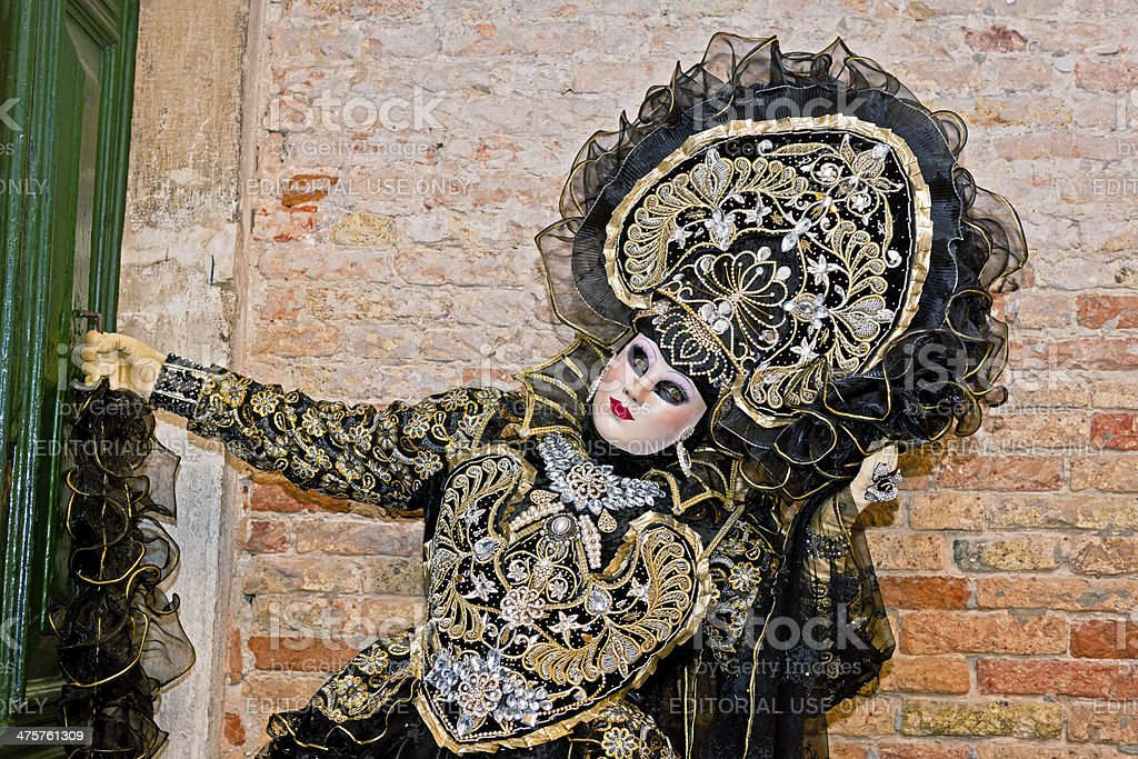 Venice Carnival VIII royalty-free stock photo