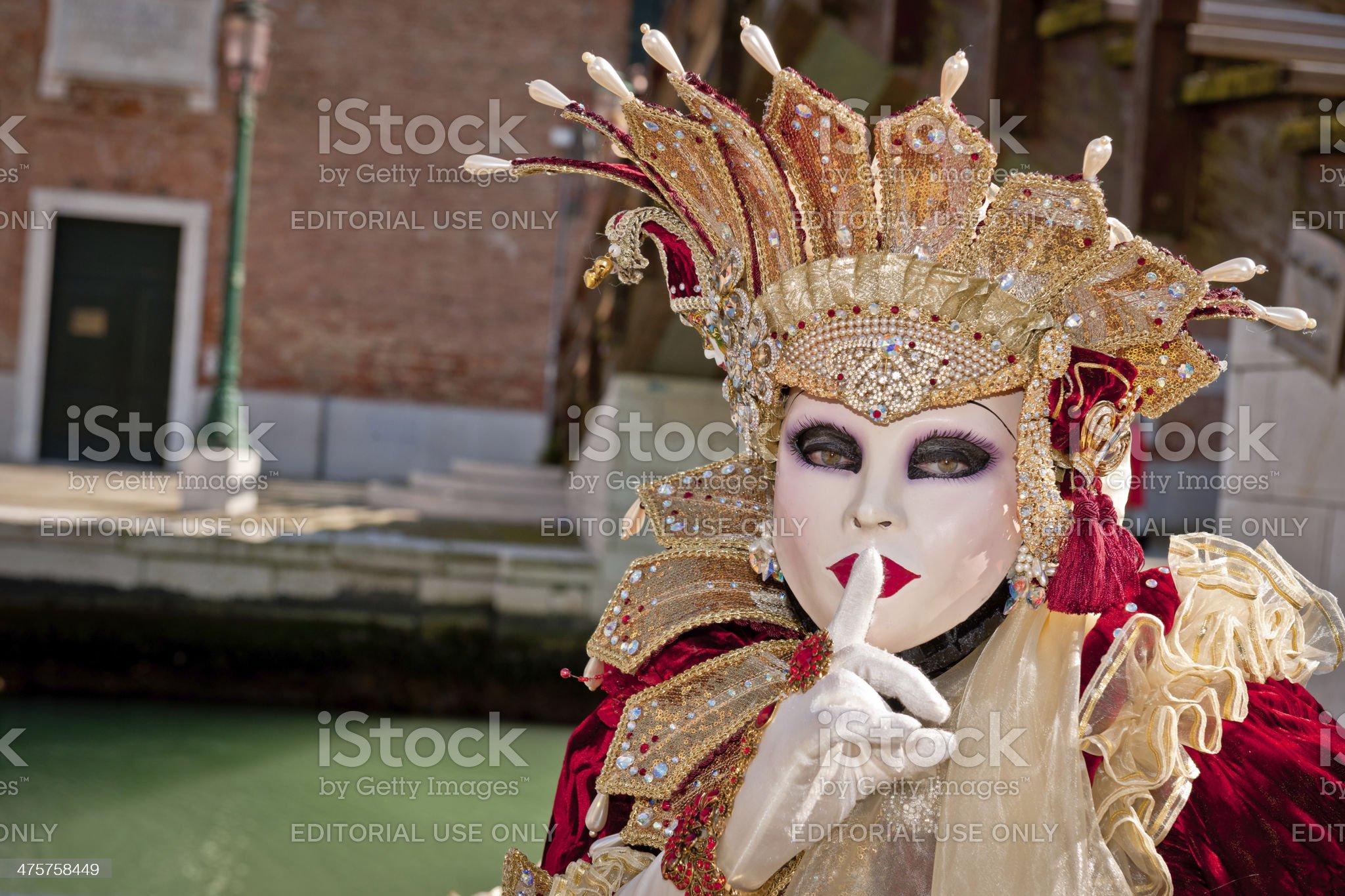 Venice Carnival XI royalty-free stock photo