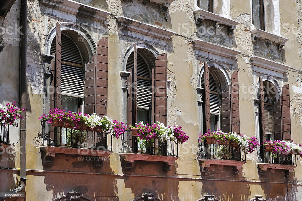 Venice - Flower Windows (XXXL) royalty-free stock photo