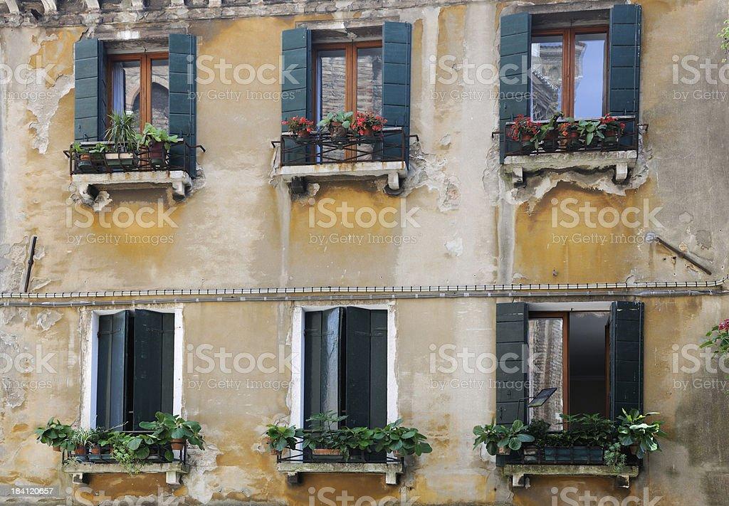 Venice - Flower Windows (XXXL) royalty-free stock photo