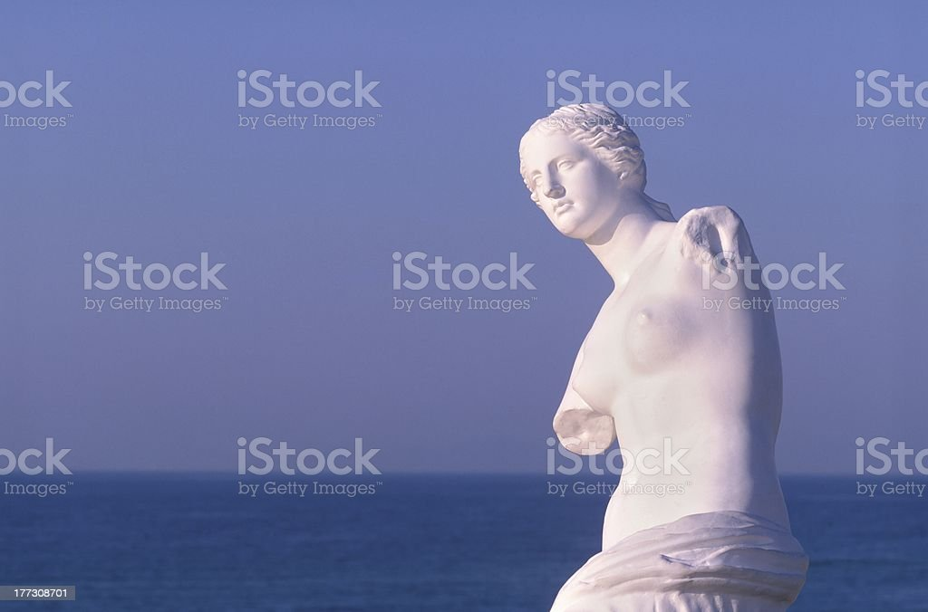 Venus royalty-free stock photo