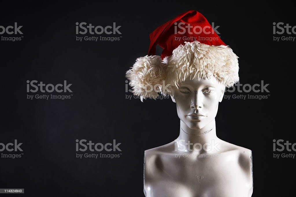 Venus with Christmas hat stock photo
