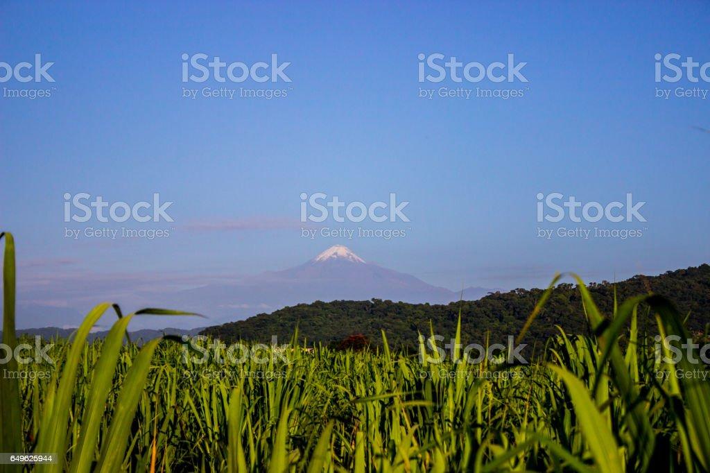 Veracruz stock photo