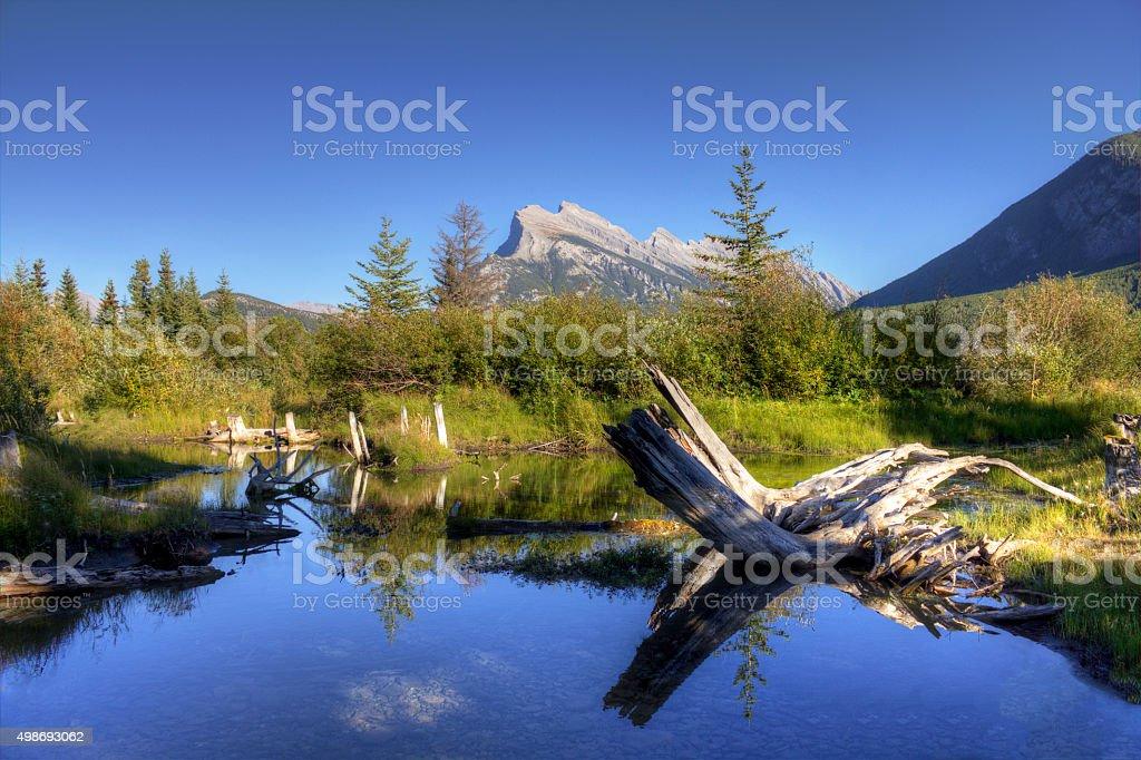 Vermilion Lake Pond royalty-free stock photo