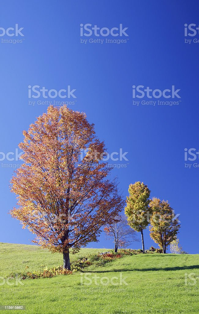 Vermont Autumn Scenery royalty-free stock photo