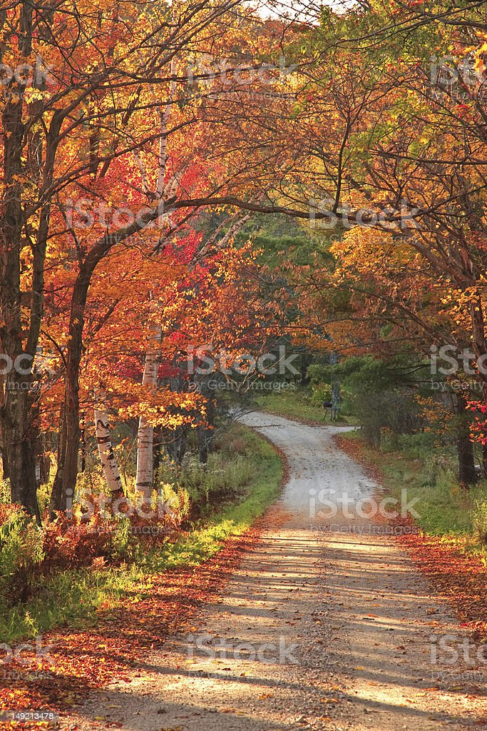 Vermont countryside road during autumn stock photo