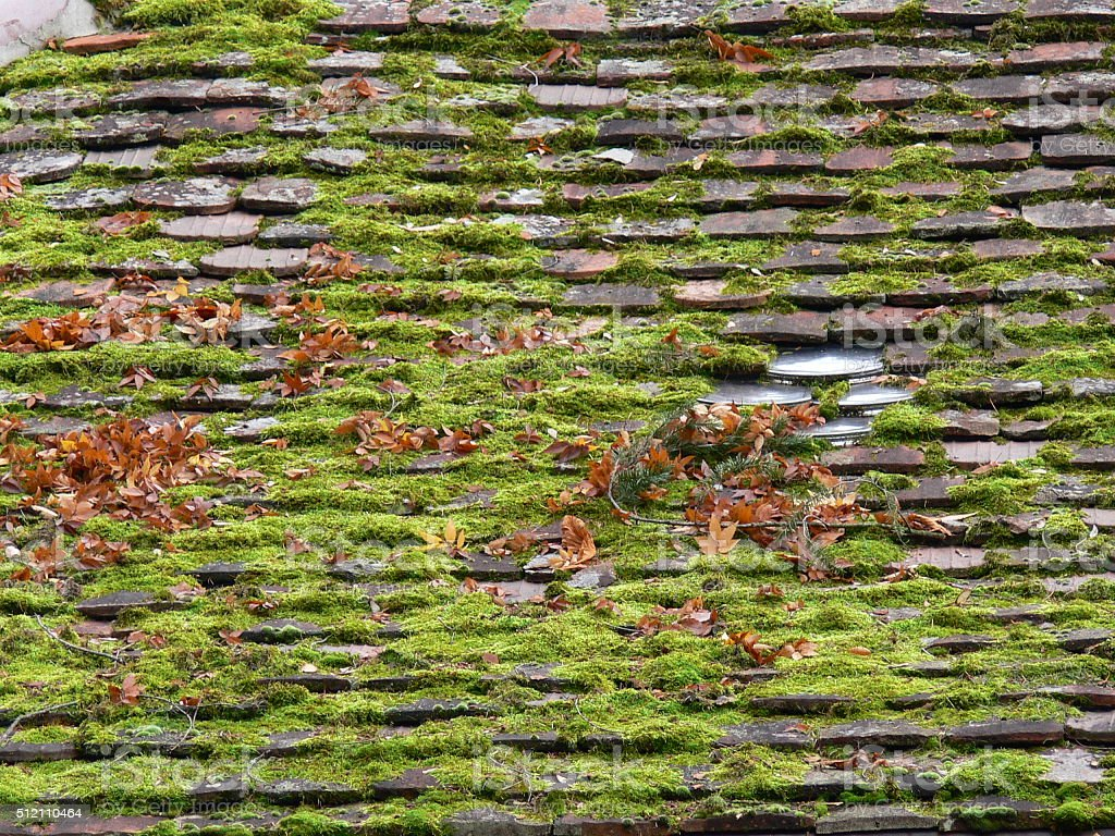 vermoostes Dach stock photo