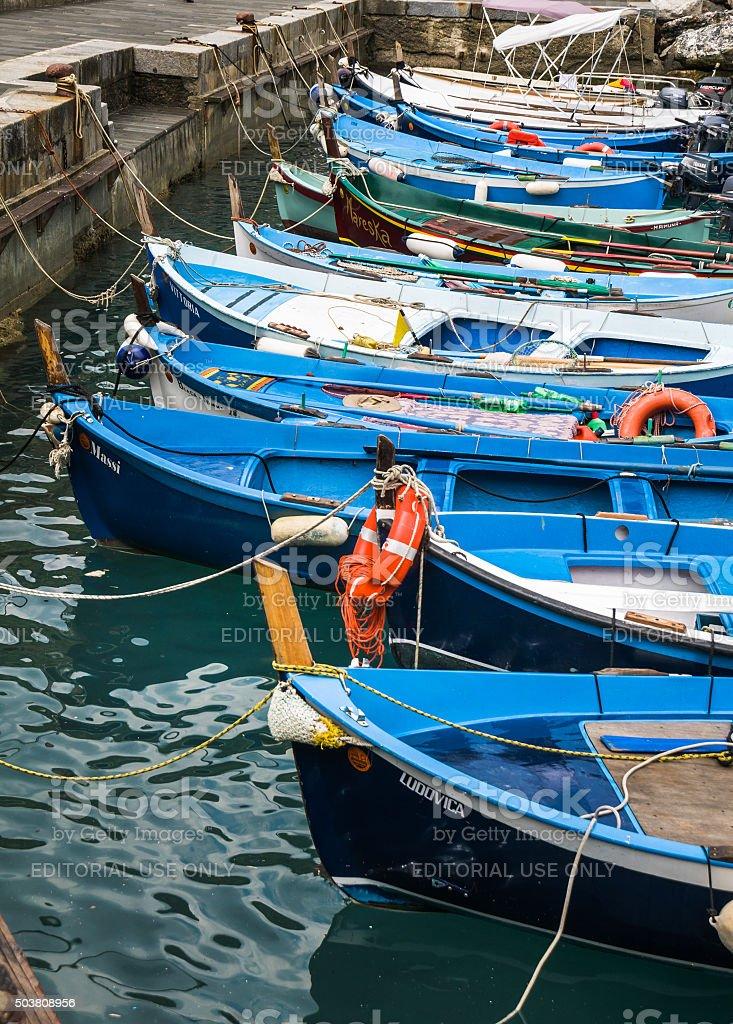 Vernazza Fishing Fleet stock photo