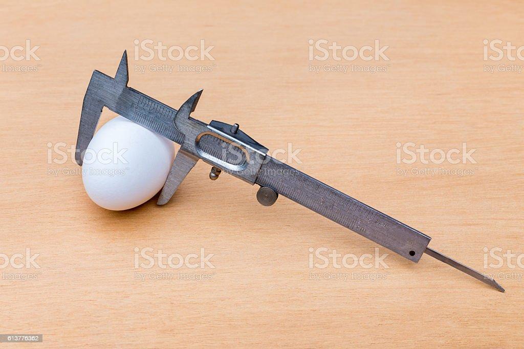 Vernier caliper measuring white chicken egg stock photo