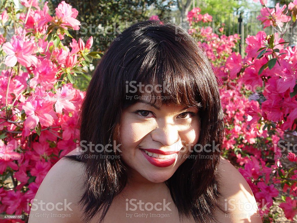 Vero with pink flowers stock photo