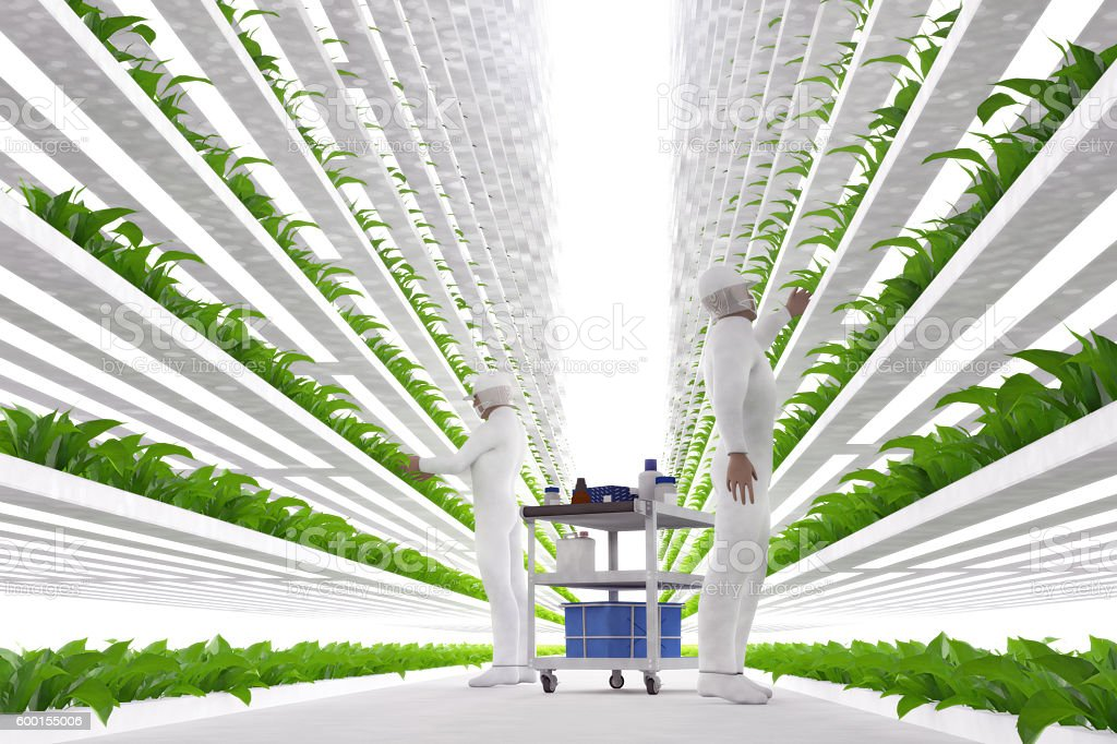 Vertical Farming 3D Illustration stock photo