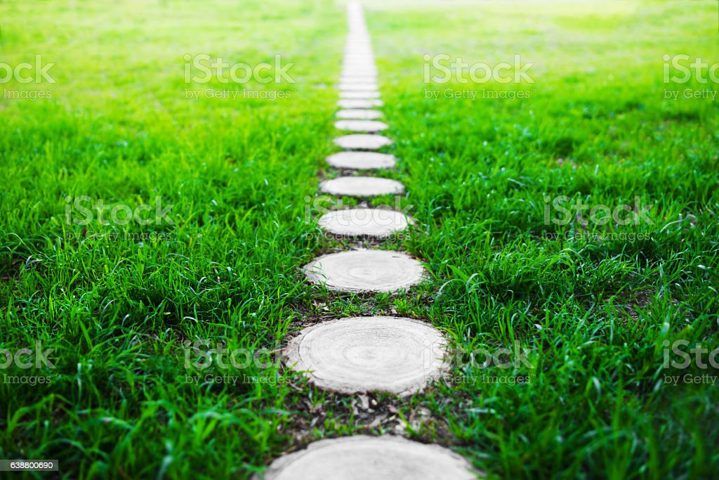 Vertical forest path footway on green grass background stock photo