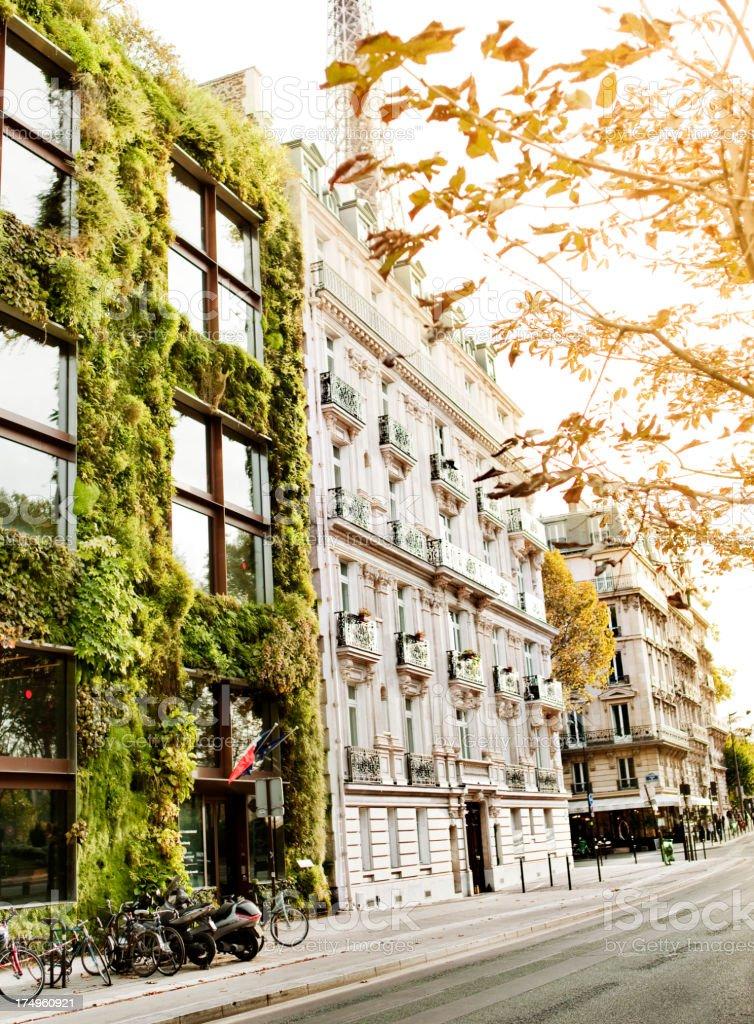 Vertical Garden in Paris stock photo