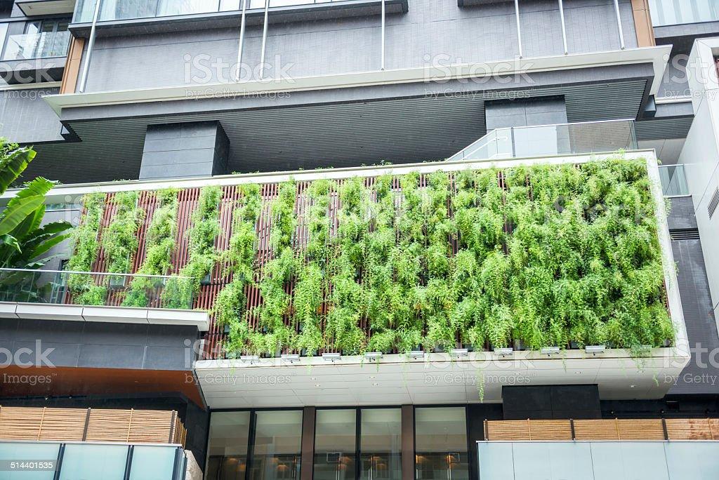 Vertical Garden of Ferns on Modern Building stock photo