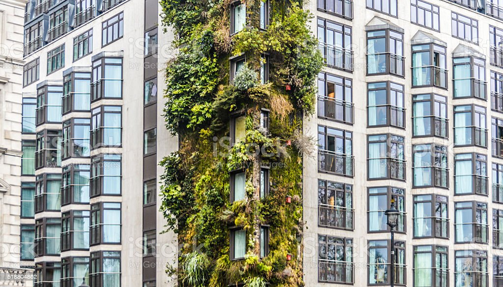Vertical garden on wall of apartment building stock photo