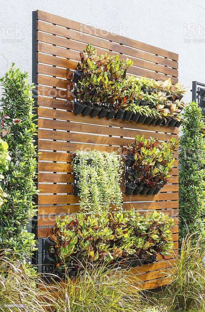 Vertical garden stock photo
