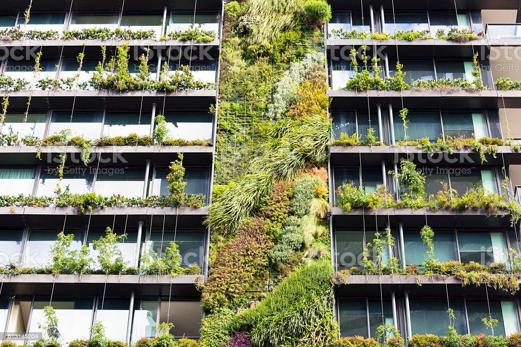 Vertical garden-green wall on apartment building, Sydney Australia stock photo