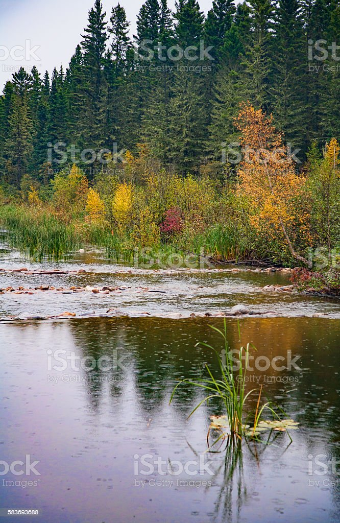 Vertical Image of Fall Colurs Reflected in Waskesiu River stock photo