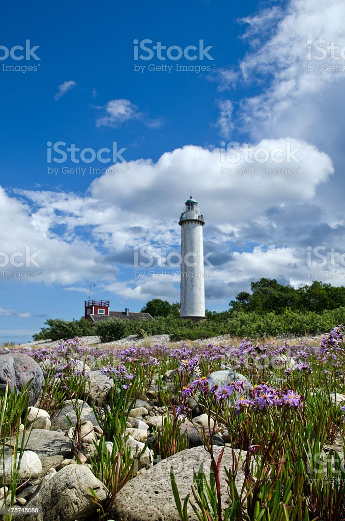Vertical image of flowers and lighthouse stock photo