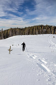 Vertical image of man snowshoeing, leaving tracks in deep snow