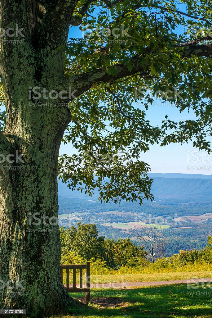 Vertical image of Shenandoah Valley Virginia stock photo
