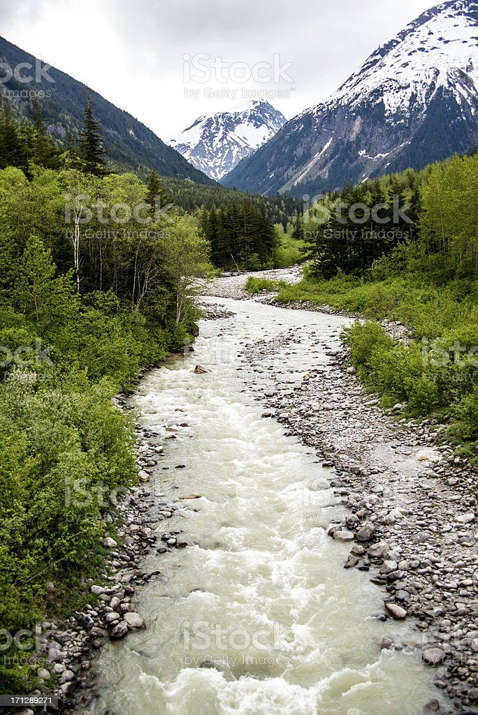 Vertical Image of Skagway River stock photo