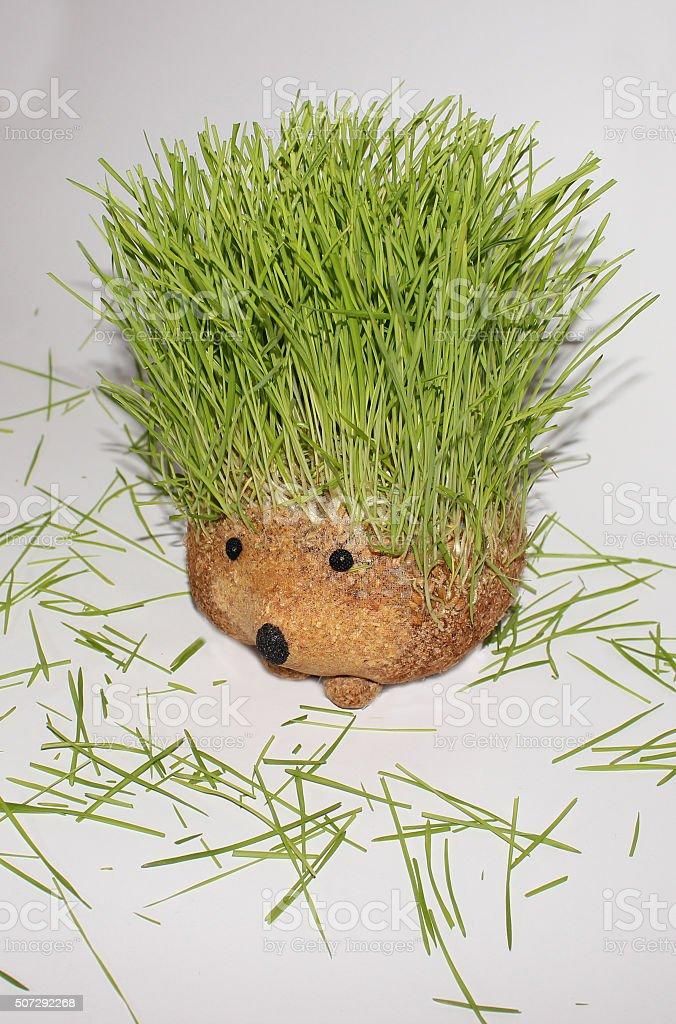 Vertical photo of hegdehog stock photo