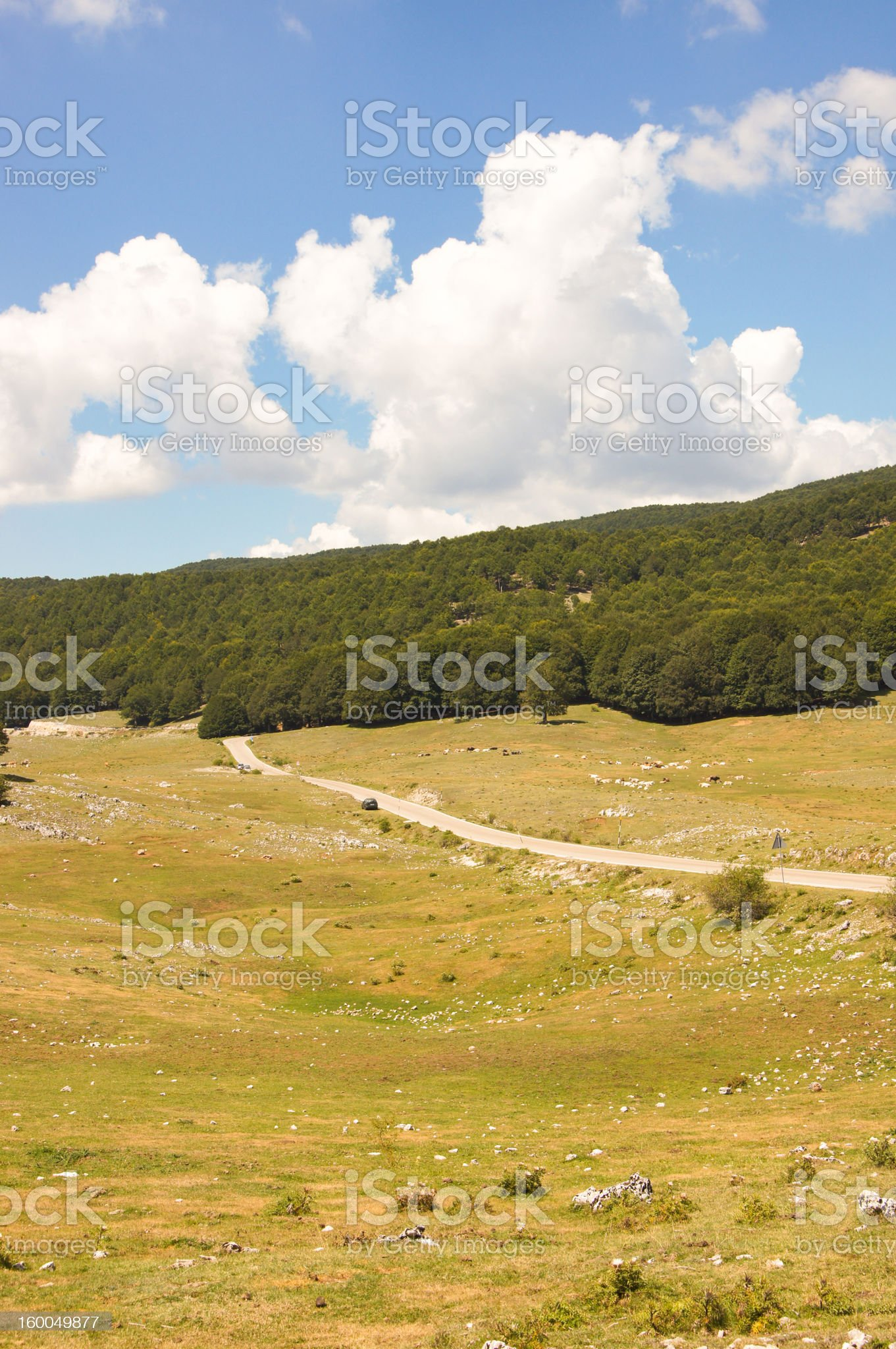 Vertical Road through Hills and Woods royalty-free stock photo