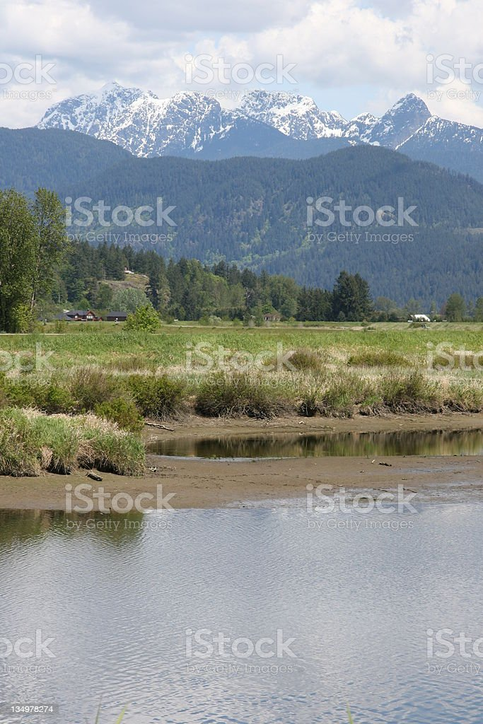 Vertical Rural Scene stock photo