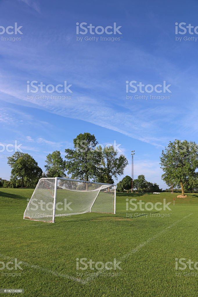 Vertical Soccer Field stock photo