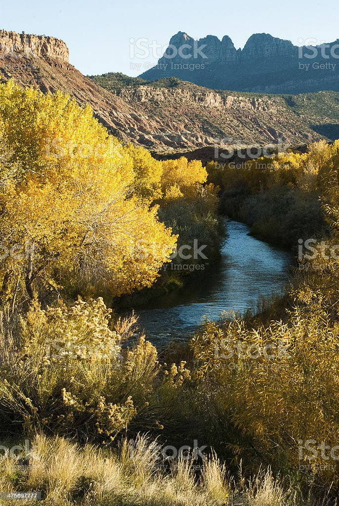 Vertical View Smithsonian Butte and Virgin River Utah stock photo