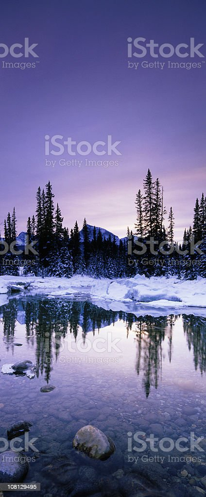 Vertical  Winter Scenic in Mountains royalty-free stock photo