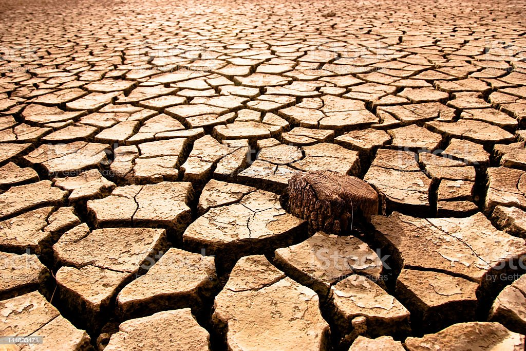 Very dry ground that is cracked stock photo