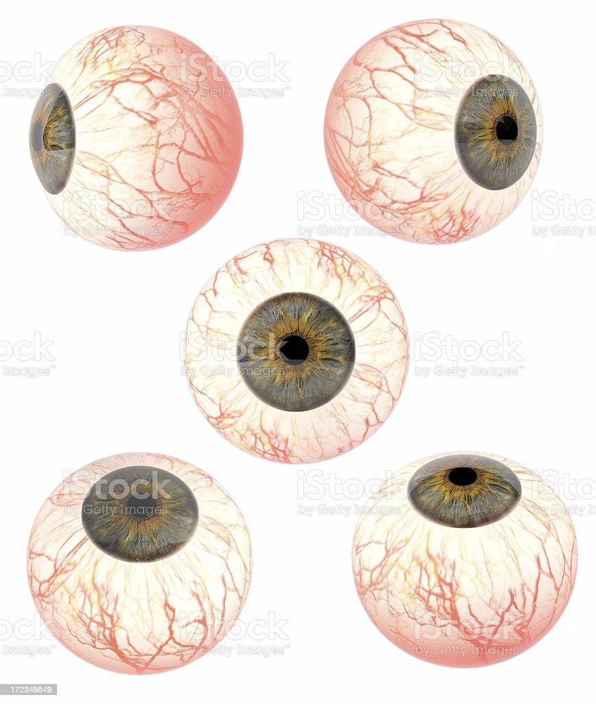 Very gore eyeballs stock photo